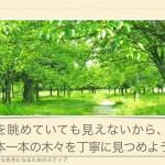 『木を見て森を見ず』で行こう♪